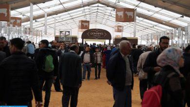 Photo of المعرض الدولي للفلاحة بالمغرب 2019 يسلط الضوء على تشغيل الشباب والتنمية القروية