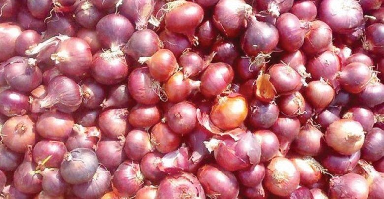 ارتفاع أسعار البصل والطماطم خلال شهر رمضان.. وزارة الفلاحة توضح أسبابه