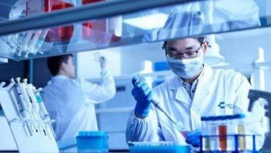 علماء صينيون يطورون مادة جديدة لمواجهة التلوث النفطي