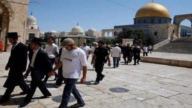 Photo of مستوطنون متطرفون يجددون اقتحاماتهم الاستفزازية للمسجد الأقصى