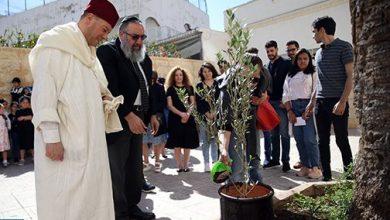 "Photo of مبادرة "" غرس الأخوة "".. غرس 3 من شجيرات الزيتون أمام كنيسة وكنيس ومسجد بالدار البيضاء"