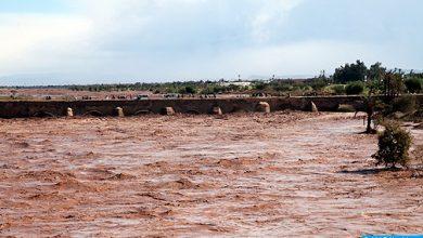 Photo of وفاة 7 أشخاص بإقليم تارودانت بسبب الفيضانات