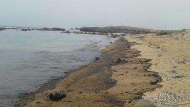 Photo of المحمدية بالصور: العثور على جثث 7 مواطنين مغاربة  لفظها البحر من بينهم امرأة