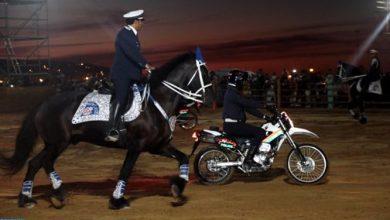 Photo of شرطة الخيالة: حينما تتحد الخيول والشرطة لخدمة الأمن العام