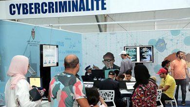 Photo of فرق مكافحة الجرائم الالكترونية… محققون يسهرون على أمن الفضاء الافتراضي