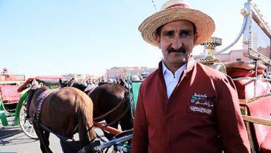 Photo of مراكش: زي موحد لسائقي العربات السياحية المجرورة بالخيول