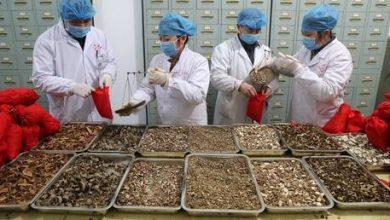 """Photo of مسؤول صيني يؤكد أن عشرات الآلاف تعافوا من """"كورونا"""" بفضل الطب الصيني التقليدي"""