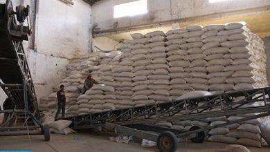 Photo of توزيع 2,5 مليون قنطار من الشعير المدعم لمربي الماشية في المناطق المتضررة من قلة التساقطات المطرية