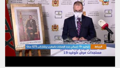 Photo of فيديو: التصريح المسائي لمدير مديرية علم الأوبئة بوزارة الصحة