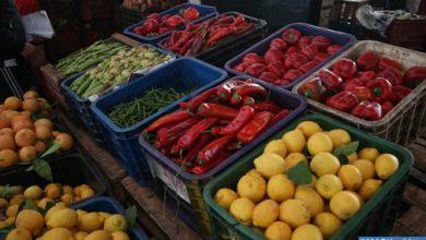 Photo of تسجيل 130 مخالفة في مجال الأسعار وجودة المواد الغذائية خلال الأيام الخمسة الأولى من رمضان