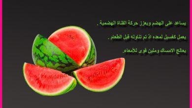 Photo of فيديو: صحتنا في رمضان.. الفوائد الصحية للبطيخ الأحمر مع الدكتور عماد ميزاب