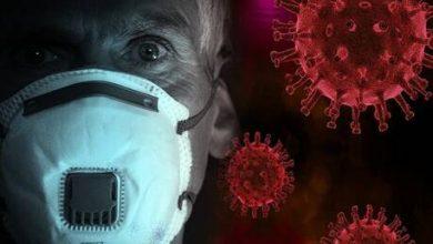 Photo of العلماء الألمان يكتشفون أجساما مضادة تحد من انتشار فيروس كورونا بشكل أكبر