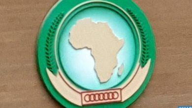 Photo of اليوم العالمي لإفريقيا.. الالتزام الإفريقي القوي للمغرب تحت قيادة الملك محمد السادس