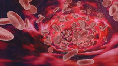Photo of 5 طرق يمكن من خلالها تعزيز الجهاز المناعي أثناء جائحة كورونا