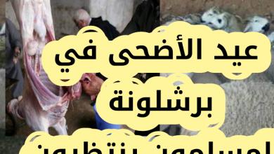 Photo of فيديو حصري.. أجواء عيد الأضحى في برشلونة