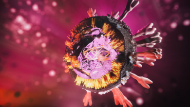 Photo of فيروس كورونا: فرنسا تسجل أزيد من 18 ألف  إصابة جديدة في حصيلة يومية قياسية منذ ظهور الوباء