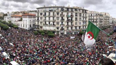 Photo of منظمات غير حكومية: قمع الحراك فضح حقيقة التعذيب بالجزائر
