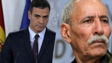 Photo of خبير فرنسي: الحكومة الإسبانية مسؤولة بشكل مباشر عن الأزمة مع المغرب