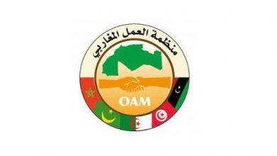 Photo of منظمة العمل المغاربي تشيد بالدعوة الملكية لإقامة علاقات مغربية-جزائرية مبنية على الثقة والحوار وحسن الجوار