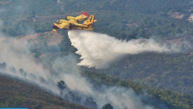 Photo of شفشاون: تواصل الجهود لإخماد حريق أتى على نحو 725 هكتار من الغطاء الغابوي