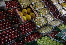 Photo of تصدير المنتجات الغذائية الفلاحية: بلاغ وزارة الفلاحة في خمس نقاط رئيسية