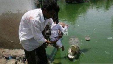 Photo of في حادثة غريبة .. رجل يقدم إبنه كقربان للتماسيح !!