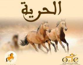 Photo of الدار البيضاء تحتضن أشغال النسخة الأولى من الجامعة الخريفية لشبيبة الاتحاد الدستوري