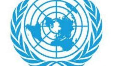 Photo of نموذج محاكاة الأمم المتحدة 2013: من تنظيم البرلمان العالمي للشباب ووزارة الشباب والرياضة