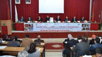 """Photo of فيديو رئيس جمعية خريجي المدرسة الوطنية للفلاحة في حديث مع """"أكورا"""""""