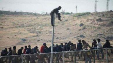 Photo of مئات المهاجرين يقتحمون سياج مليلية المحتلة