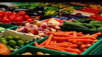 Photo of اللجنة الأوروبية توافق على مقترح مغربي في إطار المفاوضات بشأن صادرات الفواكه والخضر