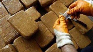 Photo of إتلاف أزيد من 16 طن من مخدر الشيرا بالدار البيضاء