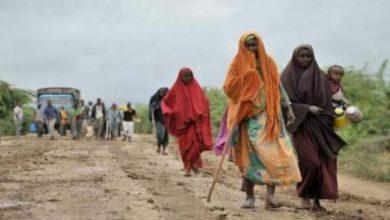 """Photo of """"احتمال قوي"""" بان يكون زعيم حركة الشباب قتل في الضربة الامريكية في الصومال"""