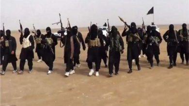 Photo of المرصد السوري: ارتفاع عدد الملتحقين بتنظيم داعش بعد قرار أوباما