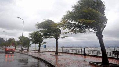 Photo of عاجل..نشرة إنذارية: عواصف رعدية تضرب البلاد