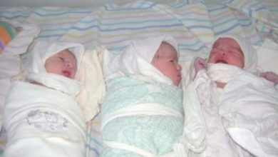 Photo of ولادة 3 توائم بصفرو.. هل يدفع الصحة إلى تحسين أداء المركز الصحي بالمنزل؟
