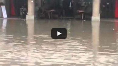 Photo of بالفيديو.. بضع مليمترات من الأمطار تغرق آسفي