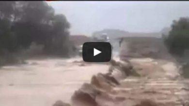 Photo of متهور يكاد يغرق سيارة 207 و ركابها