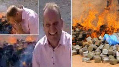Photo of فيديو .. نوبة ضحك مراسل BBC استنشق دخان أثناء حرق الحشيش