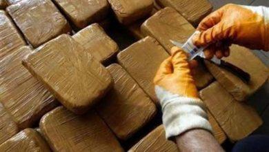 Photo of حجز حوالي 170 كيلوغرام من مخدر الكيف وأوراق التبغ بالقرب من الصويرة