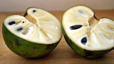 Photo of بالصور والشرح : الشيريمويا فاكهة تقتل السرطان