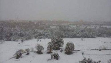 Photo of نخيل تنغير تكسوه الثلوج وتساقطات مطرية تحرم الساكنة من استمرار المتعة