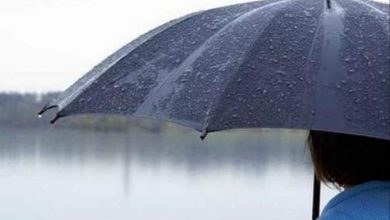 Photo of هكذا كانت مقاييس التساقطات المطرية بالمملكة خلال ال24 ساعة الماضية