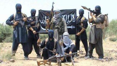 Photo of تقرير استخباراتي يكشف عن وجود 2500 مقاتل مغربي في صفوف داعش