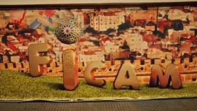 """Photo of حضور قياسي خلال الدورة 14 للمهرجان الدولي لسينما التحريك """"فيكام"""""""