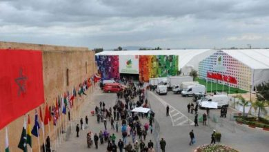 Photo of معرض للفلاحة بمكناس يفتح أبوابه للجمهور الواسع لاكتشاف المنتجات الفلاحية الوطنية