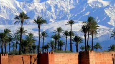 Photo of مشاركة قوية للمكتب الوطني المغربي للسياحة بمعرض السياحة بالجزائر العاصمة