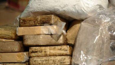 Photo of تفكيك شبكة إجرامية منظمة تنشط في مجال الاتجار الدولي في المخدرات في عملية أمنية مشتركة بين المغرب وفرنسا