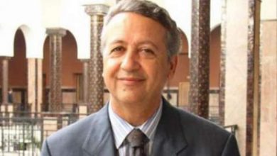 Photo of محمد ساجد: ذكرى المسيرة الخضراء أبانت عن مدى إبداع وذكاء الشباب المغربي